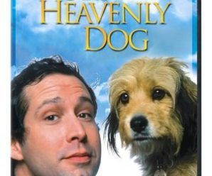 Our Favorites: Dog Movies.